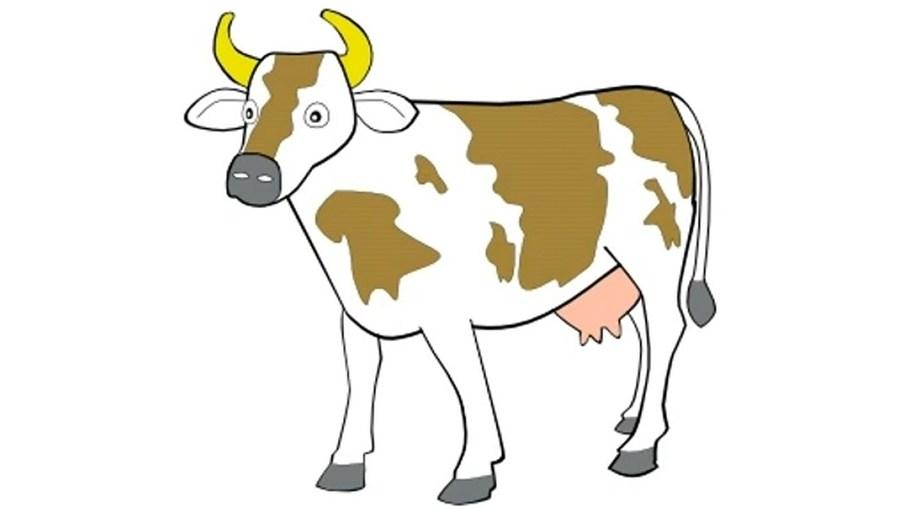 Seldom.. possible Angus bull clip art