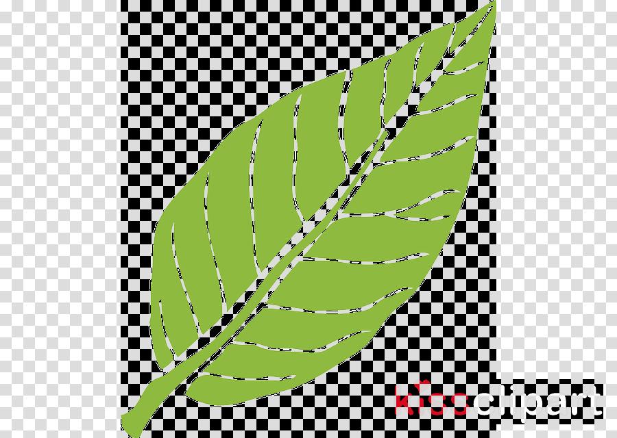 leaf image transparent clipart Leaf Natural environment