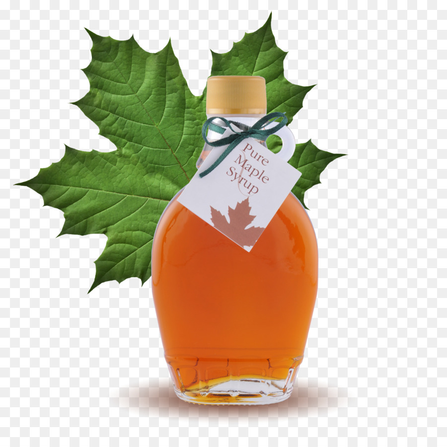 Image result for clipart MAPLE SYRUP