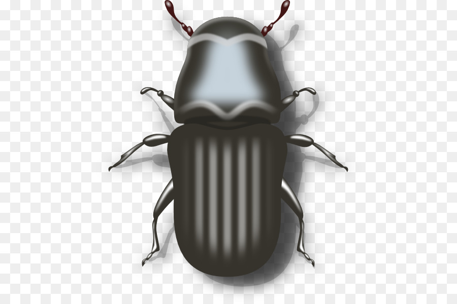 bug clipart Beetle Clip art