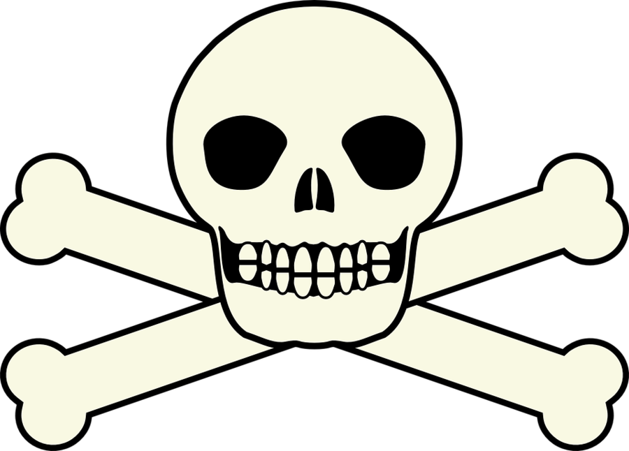 Pirate Skull Head Transparent Png Image Clipart Free Download