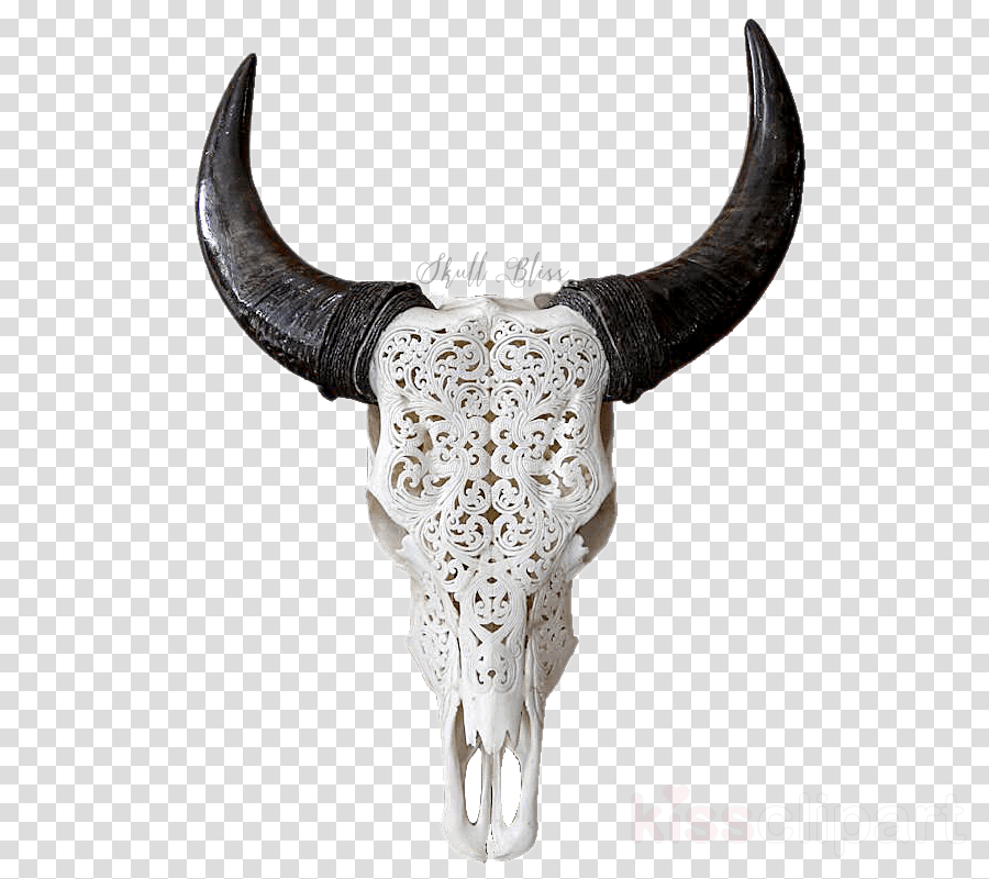 Skull Head Transparent Png Image Clipart Free Download