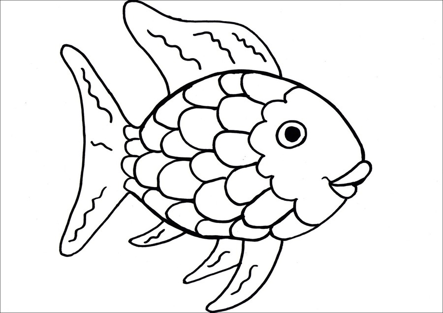 Download rainbow fish coloring page clipart coloring book the download rainbow fish coloring page clipart coloring book the rainbow fish colouring pages maxwellsz