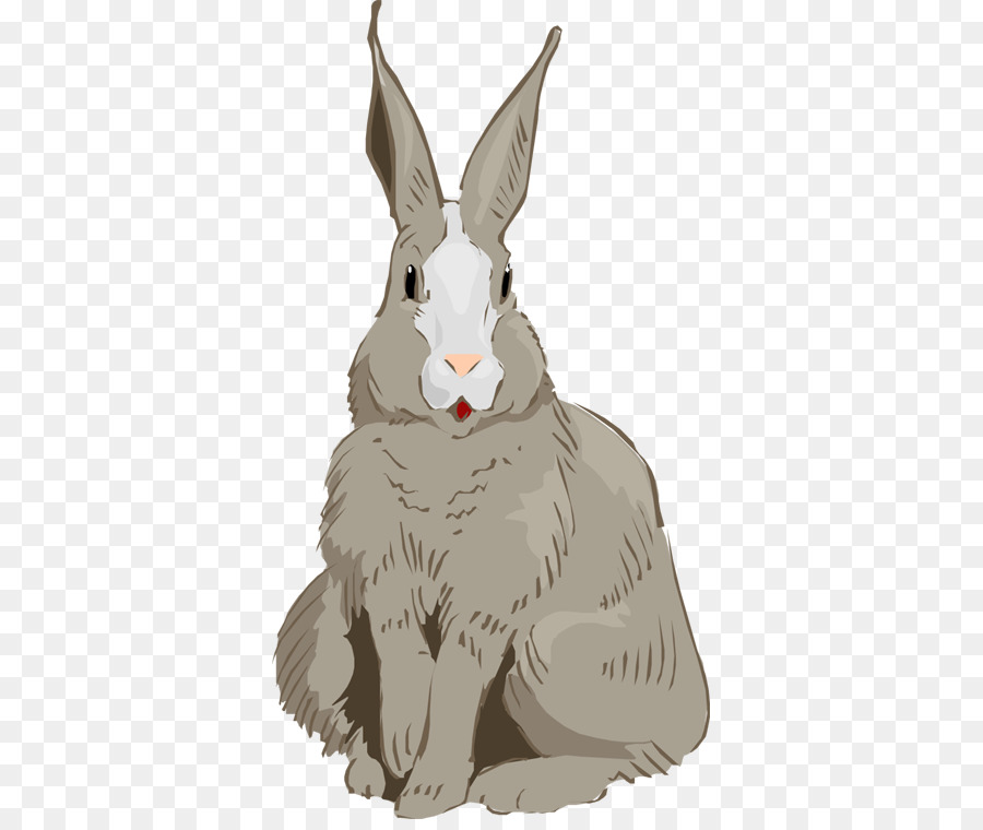 Rabbit clipart Domestic rabbit Hare