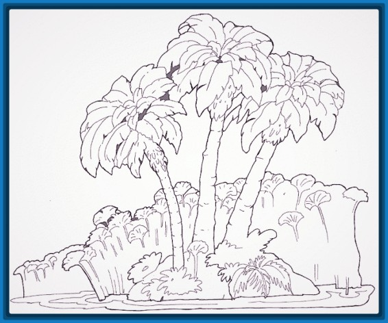 Forest Drawing Color Flower Tree Plant Art Sketch Line