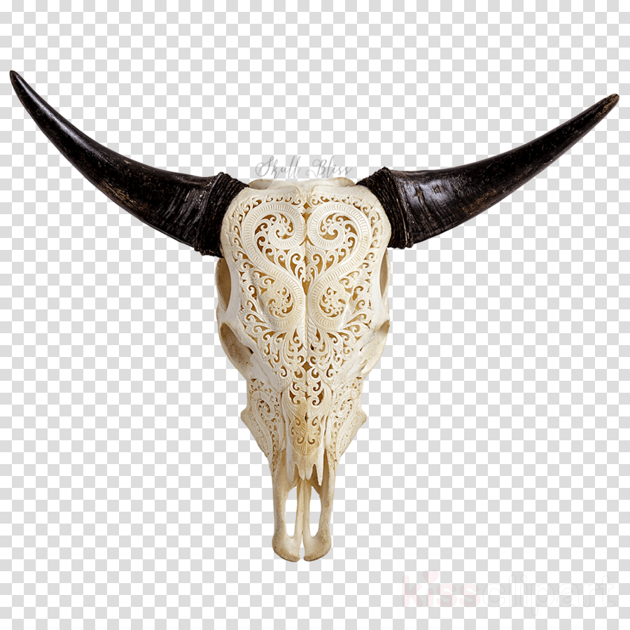 Skull Ox Transparent Png Image Clipart Free Download