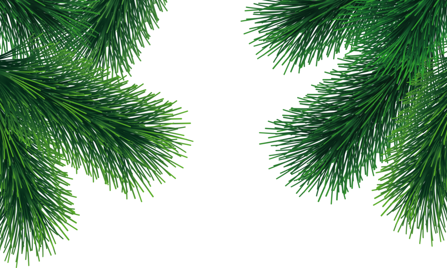 Christmas Leaf Png.Palm Tree Leaf Clipart Pine Tree Leaf Transparent Clip Art
