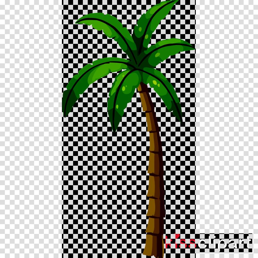 Illustration Coconut Tree Transparent Png Image Clipart Free