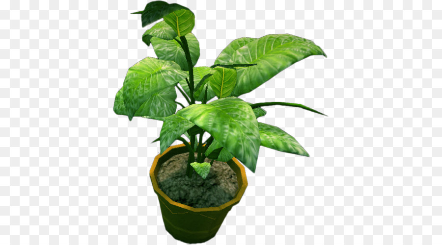 Potted Plant Background