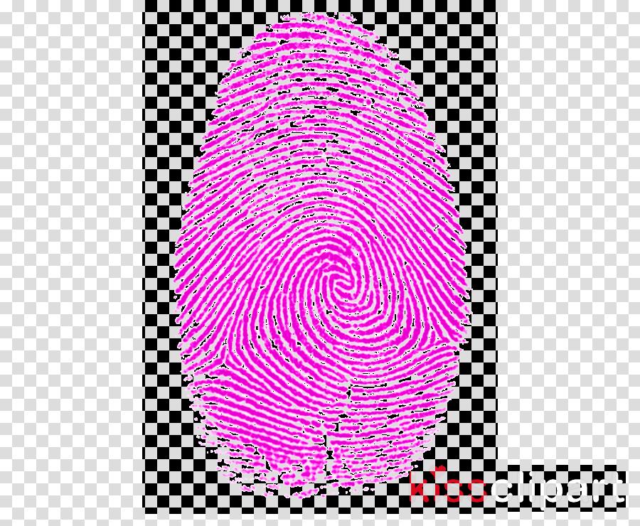 Fibonacci number clipart Fibonacci number Golden ratio