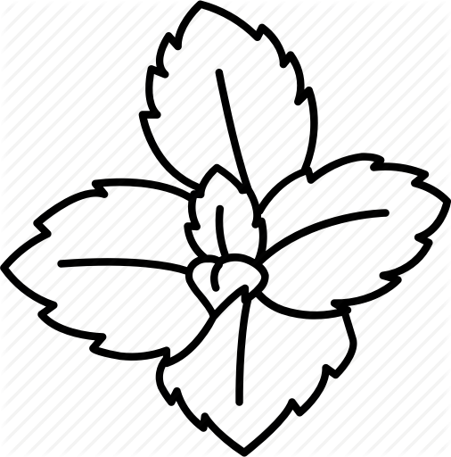 Peppermint Line Drawing Clip Art