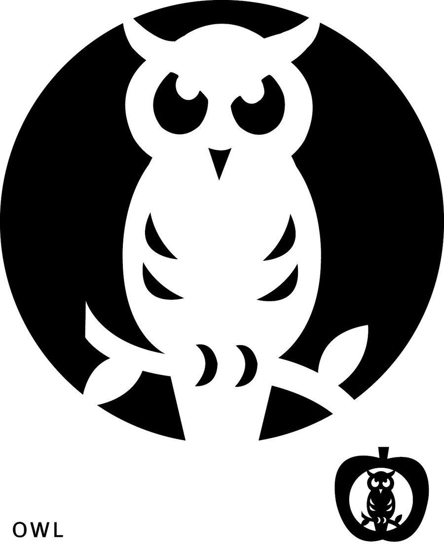 Download Owl Pumpkin Template Clipart Halloween Pumpkins Jack O