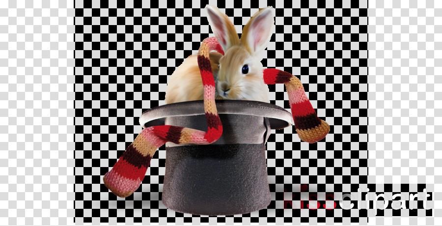 Rabbit clipart Rabbit Centerblog
