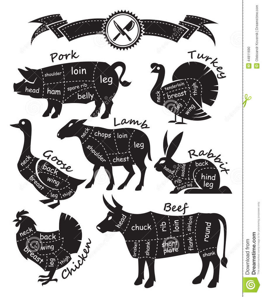 Download Meat Cut Diagram Clipart Venison Of Beef Cuts