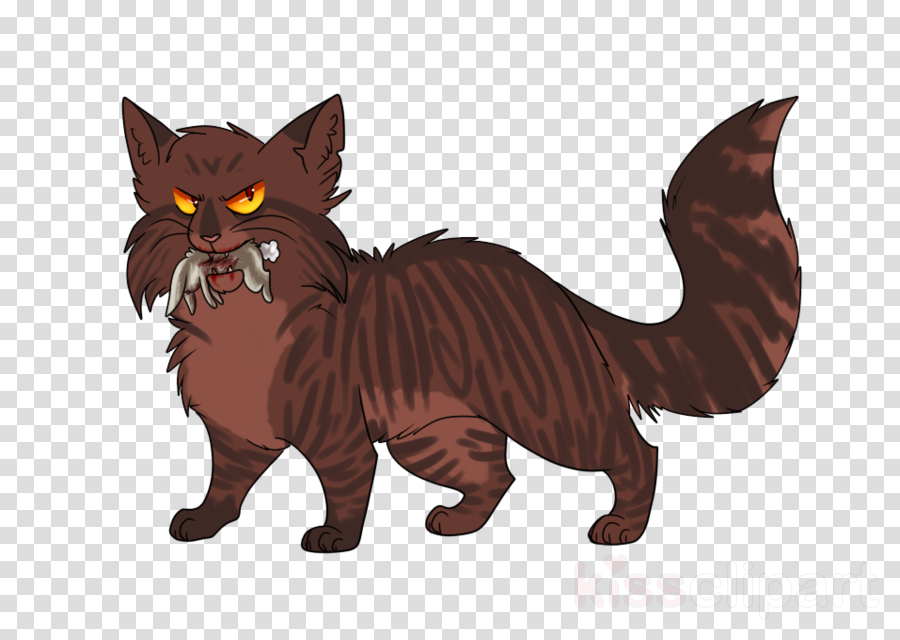 tigerclaw warriors png clipart Maine Coon Whiskers Warriors