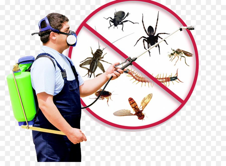pest control clipart Pest Control Services