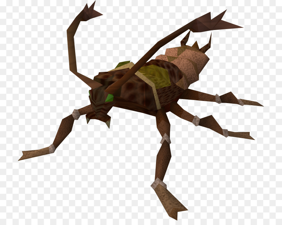 Cockroach clipart Insect Cockroach Pest