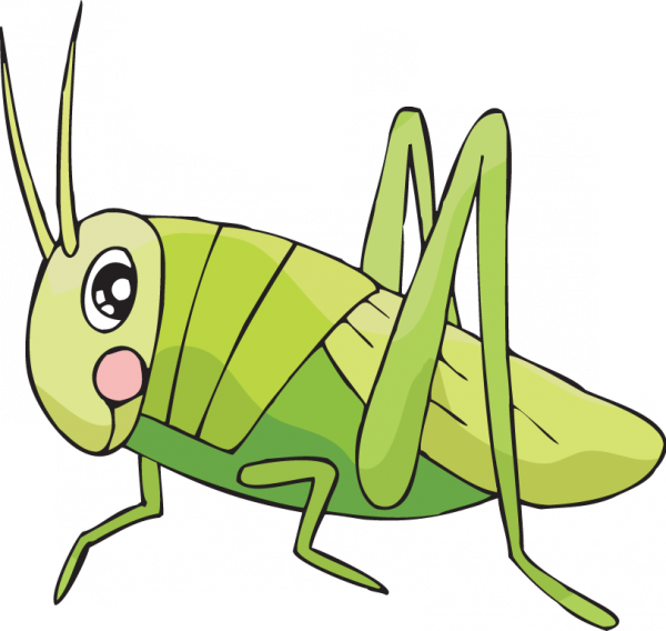 easy to draw cricket clipart Drawing Insect Clip art