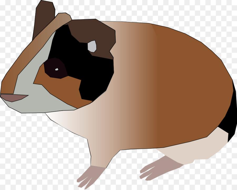 Hamster Background
