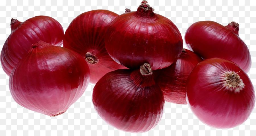 Onion Cartoon