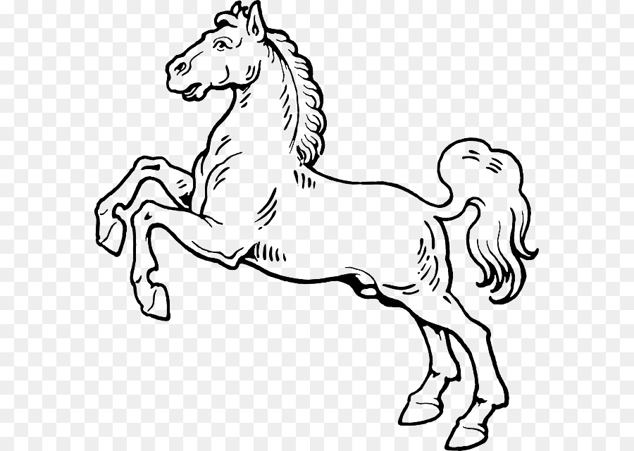 Horse Drawing Graphics Transparent Image Clipart Free Download