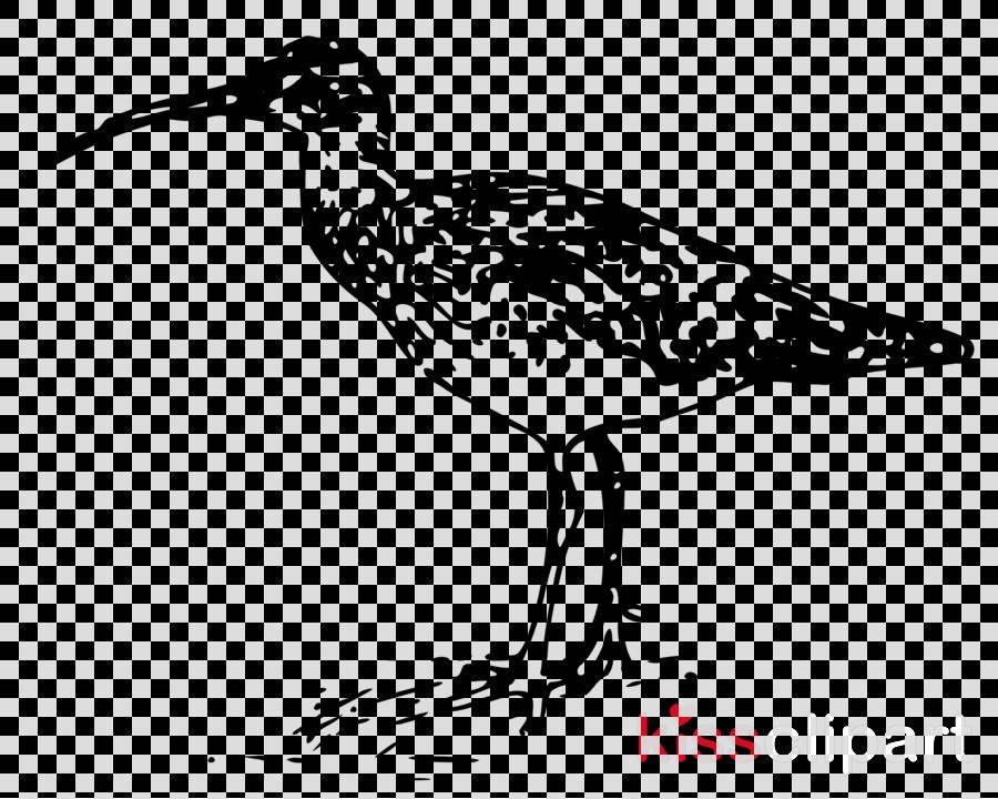 Curlews clipart Wader Bird Clip art