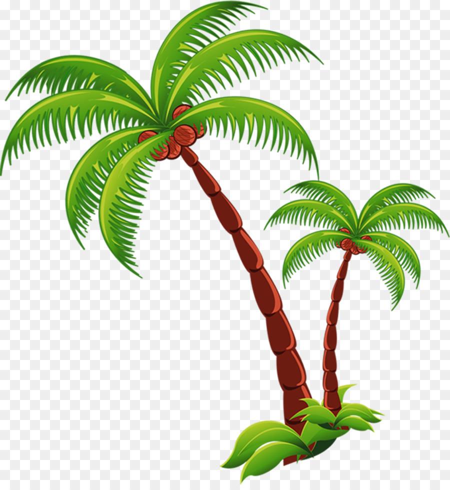 Trees coconut. Tree cartoon clipart plant