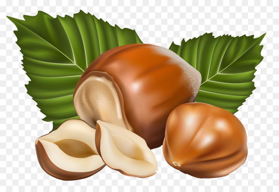 nuts logo vector clipart Nut Clip art