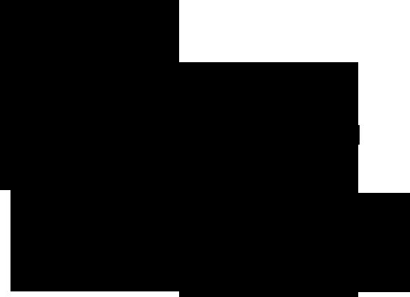 Joint Bone Diagram