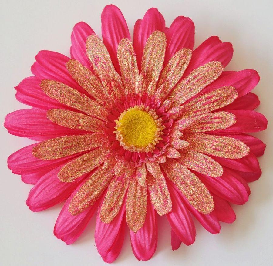 Download gerbera clipart transvaal daisy flower chrysanthemum gerbera clipart transvaal daisy flower chrysanthemum izmirmasajfo