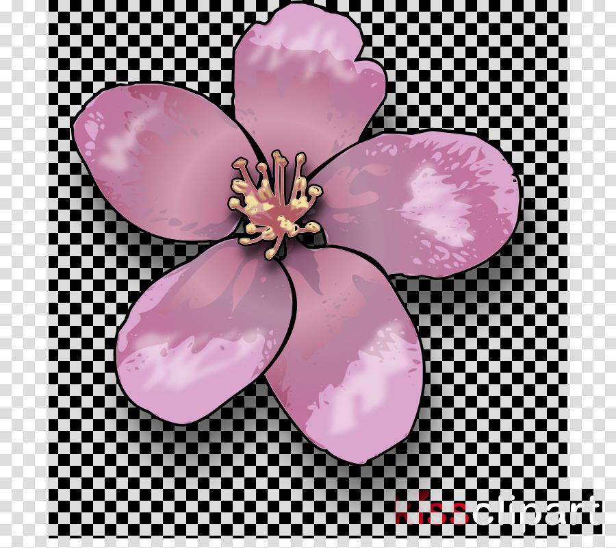 apple blossom clip art clipart Blossom Clip art