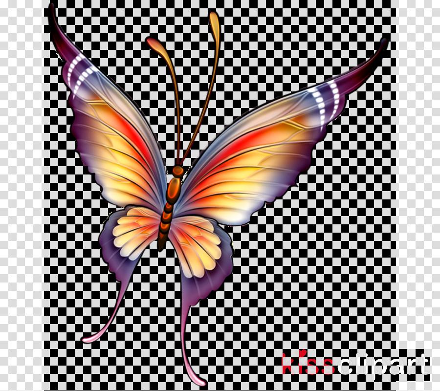 Mariposas Pintadas Tela Mariposa Clipart Wwwimagenesmicom
