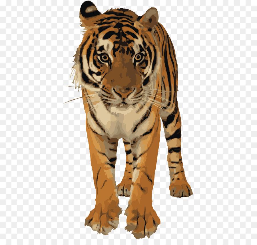 dekorácie tiger clipart Bengal tiger Golden tiger Lion