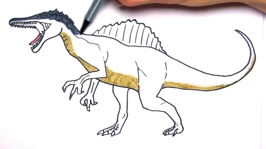 Download dibujos de espinosaurio para colorear clipart Spinosaurus ...