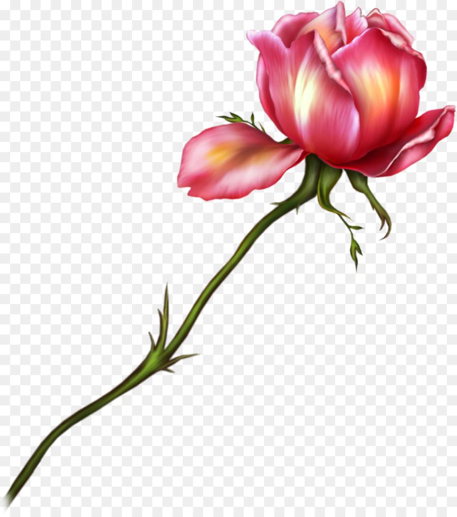 Wedding Watercolor Flowers