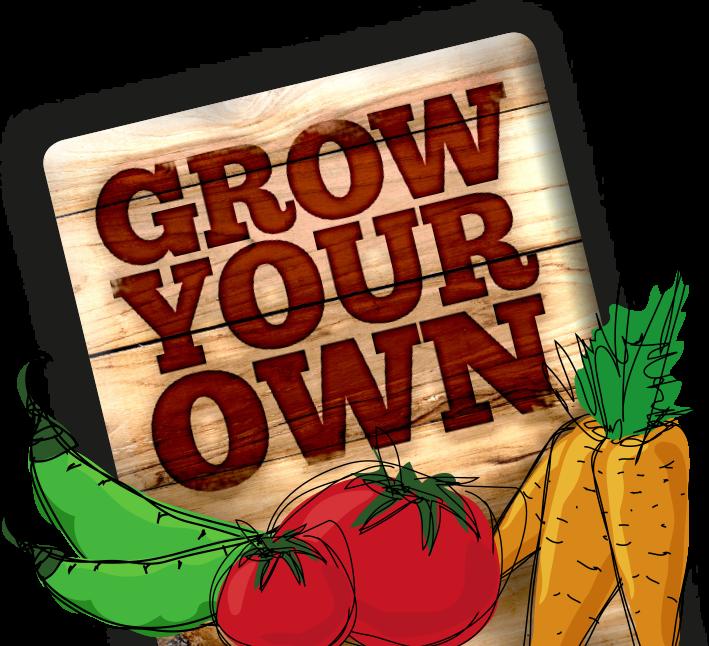 Vegetable Cartoon clipart - Garden, Vegetable, Food ...