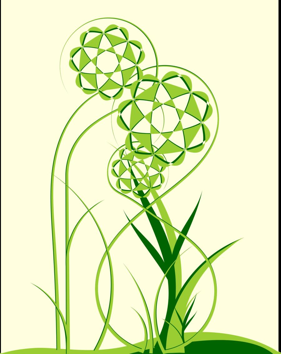 green leaf flower plant line grass font graphics tree
