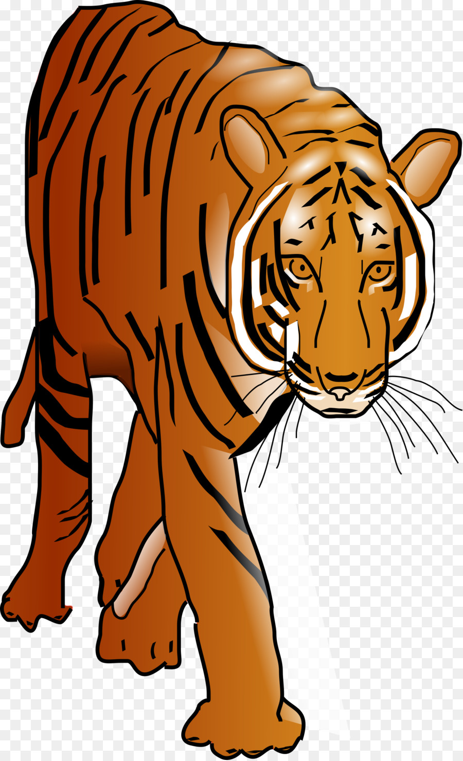 custom bengal tiger shower curtain clipart Bengal tiger Bengal cat Clip art