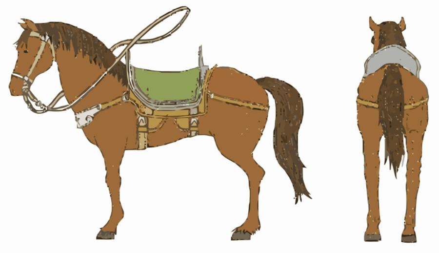 Foal clipart Mule Foal Mustang