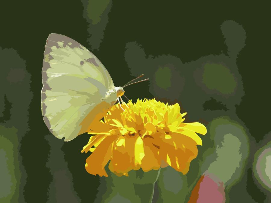 Goodbye May Hello June Clipart Desktop Wallpaper