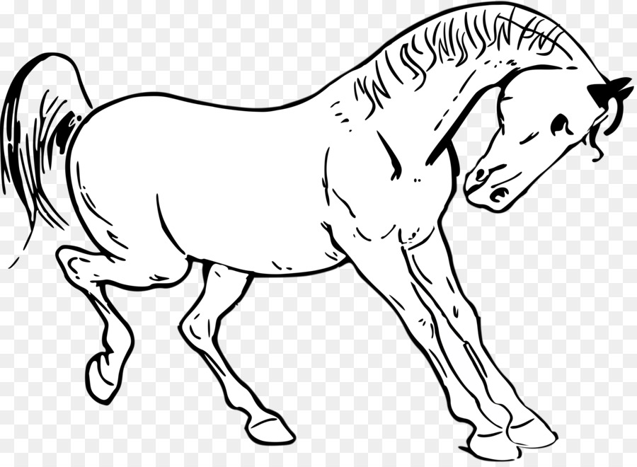 horse outline png clipart Tennessee Walking Horse Arabian horse American Paint Horse