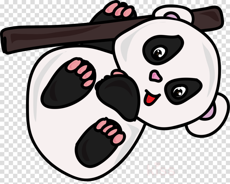 Giant panda clipart Giant panda Bear Cuteness