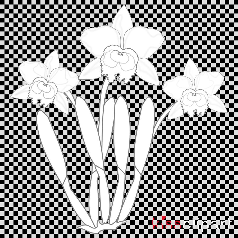 Floral design clipart Floral design Flower