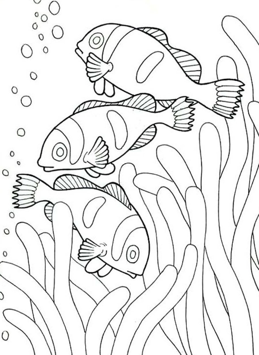 Download fish coloring pages clipart Coloring book Colouring Pages ...