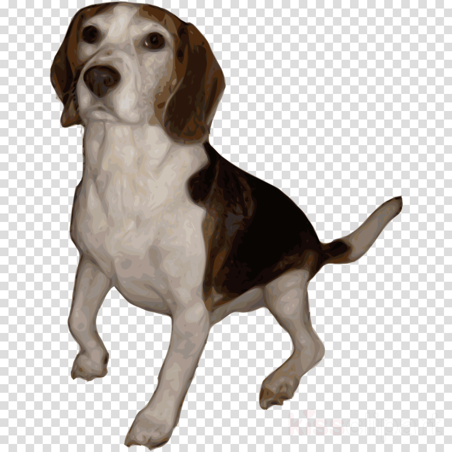 Life Is Better With A Beagle Shower Curtain Clipart Puppy Jack Russell Terrier
