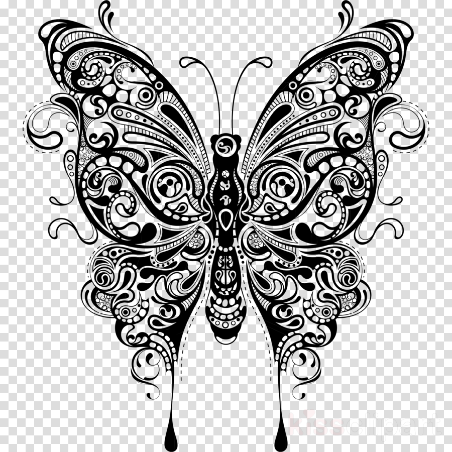 Butterfly Art Design Transparent Png Image Clipart Free Download