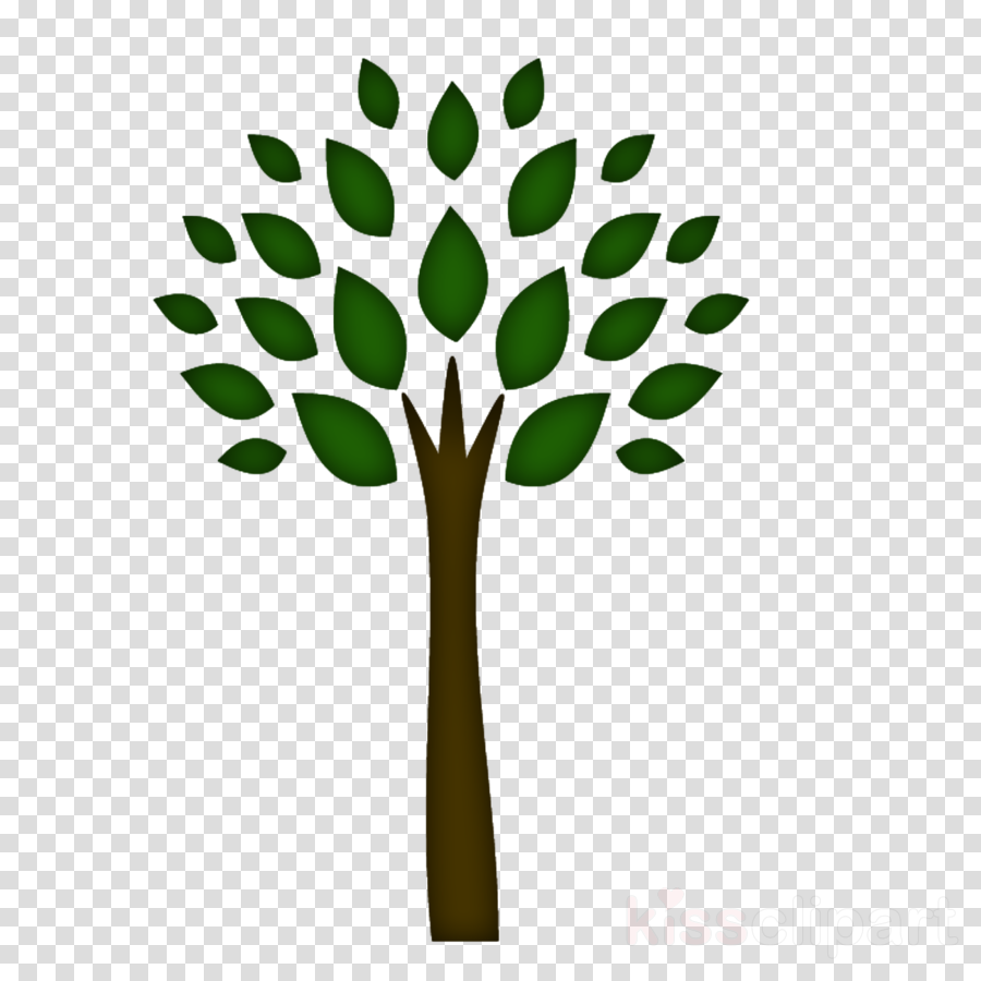 Tree Leaf Plant Transparent Png Image Clipart Free Download