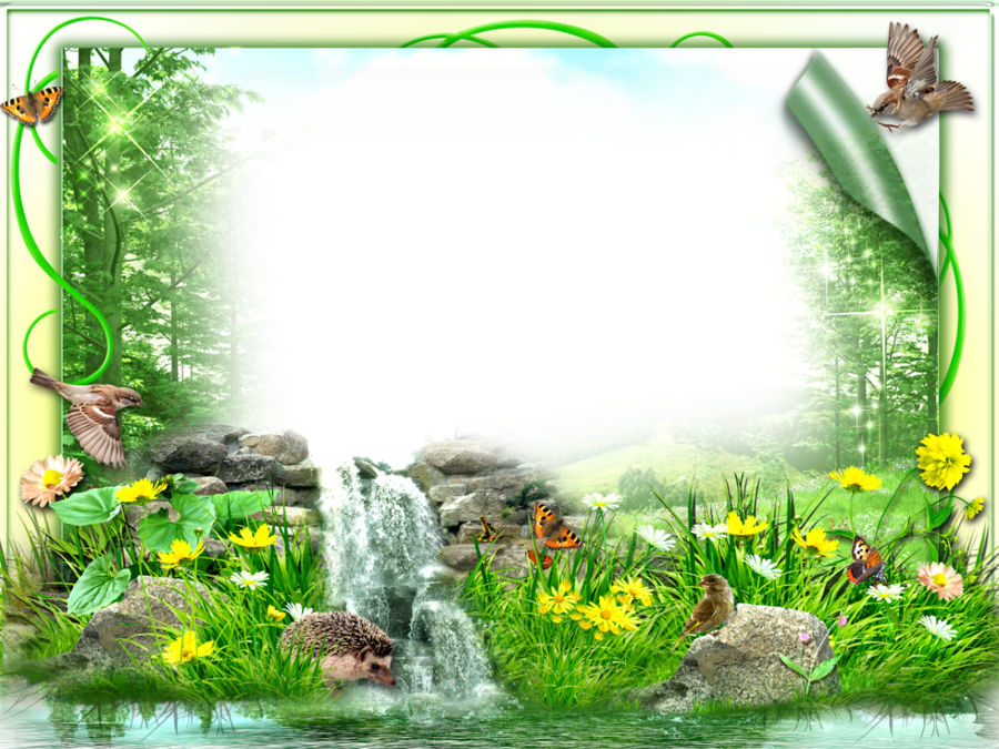 Nature Background Frame