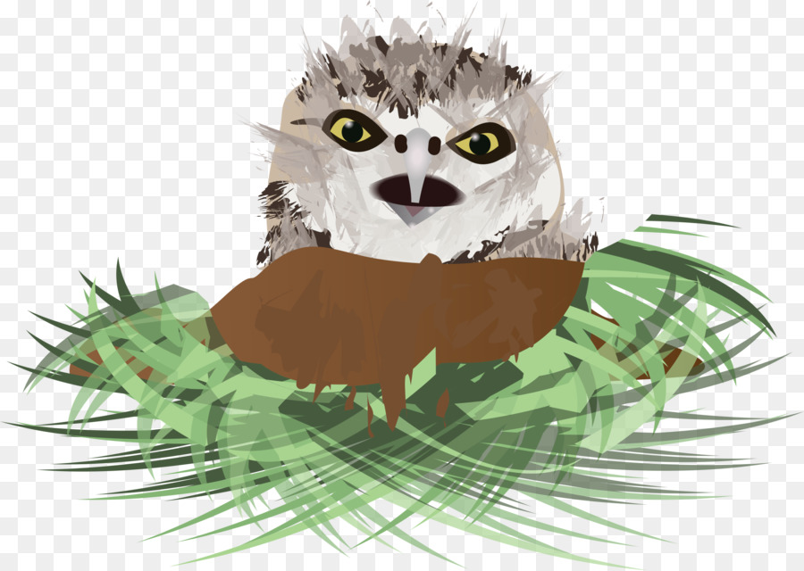 Clip art clipart Owl Clip art