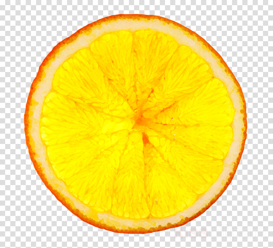 orange clipart Lemon Juice Orange drink